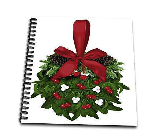 3dRose Anne Marie Baugh - Christmas - Pretty Christmas Mistletoe Ball Illustration - Memory Book 12 x 12 inch (db_318498_2)