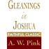 Gleanings in Joshua (Arthur Pink Collection Book 28)