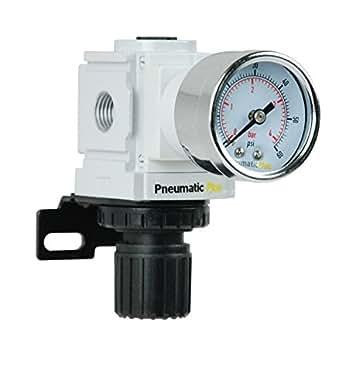 Pneumaticplus Ppr2 N02bg 4 Miniature Air Pressure