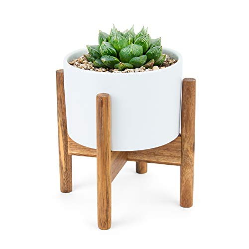 Modern Succulent Tabletop Planter. Small 5.2
