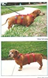 Harness for Dachshunds & Small Breeds. Cats too