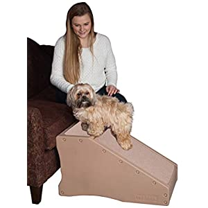 Pet Gear Stramp Stair and Ramp Combination, Dog/Cat Easy Step, Lightweight/Portable, Sturdy Click on image for further info.