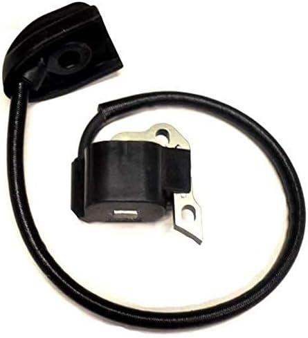 Amazon.com: Bobina de encendido para Homelite 291424001 ...