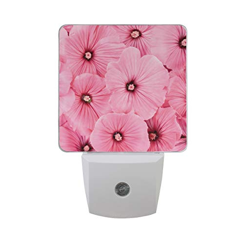 Night Light Pink Flowers Led Light Lamp for Hallway, Kitchen, Bathroom, Bedroom, Stairs, DaylightWhite, Bedroom, Compact
