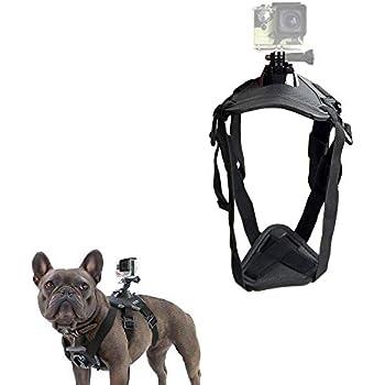 Amazon Com Kourpar Dog Harness Chest Strap Adjustable