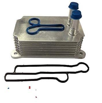 Radiador de aceite de transmisión 2.4 RWD MK6 TDDI TDCI 90PS + junta gratuita: Amazon.es: Coche y moto
