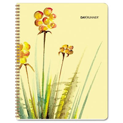 (Day Runner Water Colors 2011 Monthly Planner, 6 x 9 Inches (791-800G))