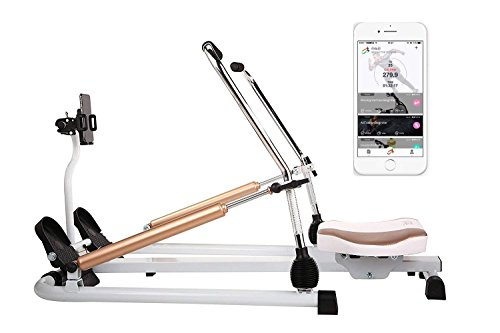 fitbill Rowing Machine Rower with Workout App, Hydraulic Resistance and Free Motion Arms, Model f.Row - Hydraulic Rower