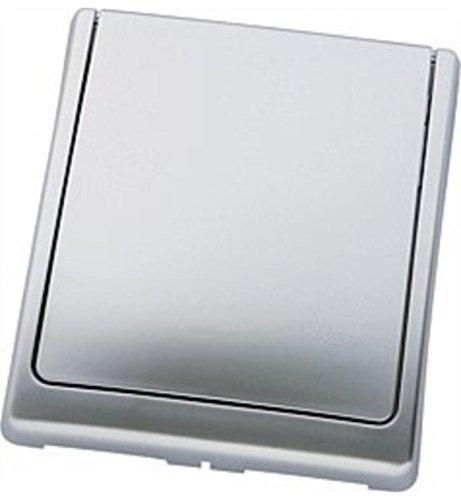 Grohe Abdeckplatte 43179P00