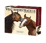 What Horses Teach Us 2022 Box Calendar, Daily Desktop