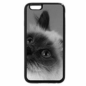iPhone 6S Plus Case, iPhone 6 Plus Case (Black & White) - BIRMAN CATR