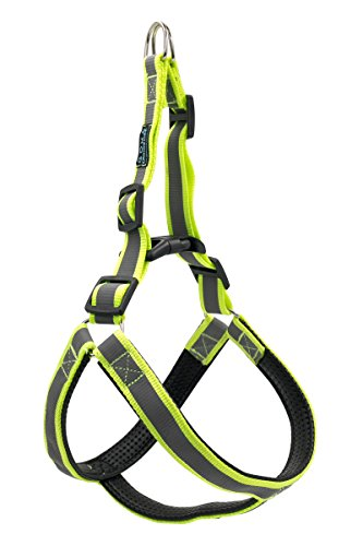CanineLine Best No Pull Reflective Dog Harness for Medium Dogs - Safe And Easy Way to Walk Your Pet At Night - Tough Materials - Adjustable Straps - Ultra Resistant ()