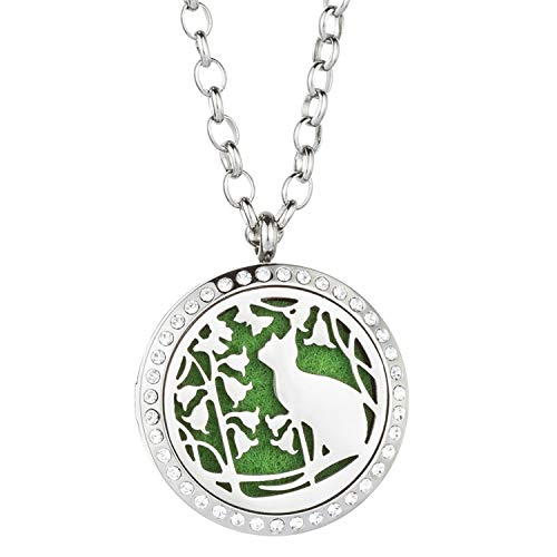 Jenia Carving Locket Pendant Perfume Essential Oil Diffuser Necklace Surgical Stainless Steel ,Free Pads