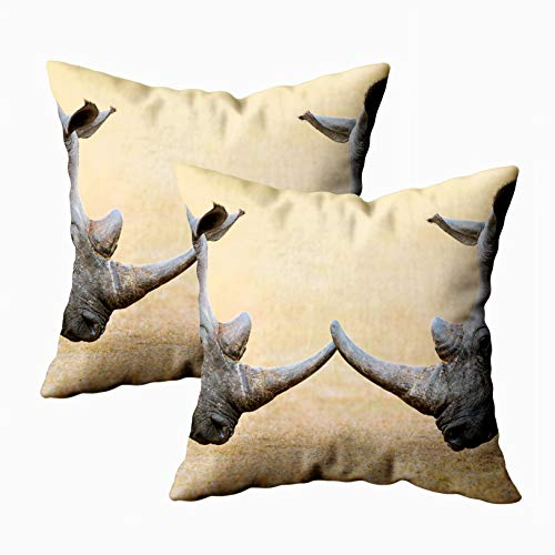 Capsceoll Throw Pillow Covers, 2PCS White Rhinoceros Head to National Park South Africa Simum Kruger 18x18 Pillow Covers,Home Decoration Pillow Cases Zippered Covers Cushion for Sofa Couch ()