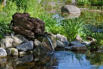 Jardín de estanque con fresco de fuente (53090860), lona, 60 x 40 cm: Amazon.es: Hogar