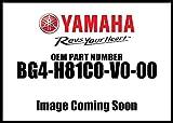 2018-2019 YAMAHA WOLVERINE X2 X4 AUDIO POD SYSTEM - BLUETOOTH - AM/FM RADIO - by SSV WORKS - BG4H81C0V000