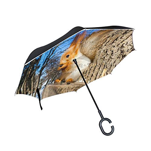Inverted Umbrella Squirrel In The Winter Forest Double Layer Reverse Umbrella Windproof UV Protection with C-Shaped Handle