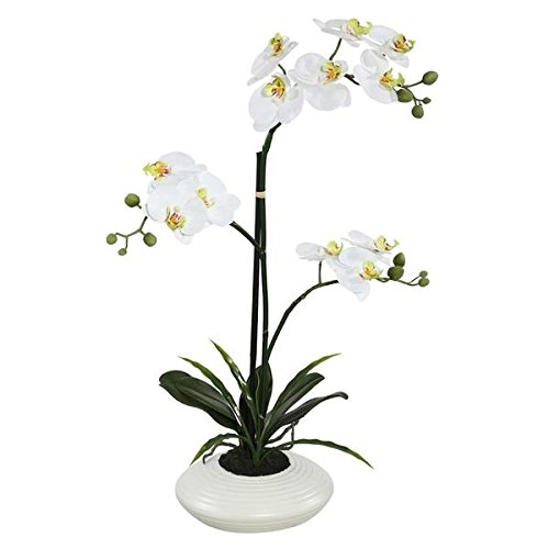 Vickerman FC170702 White Orchid Everyday Floral