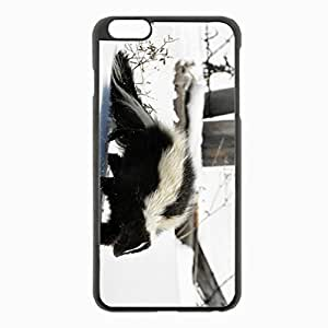 iPhone 6 Plus Black Hardshell Case 5.5inch - skunk snow trail walk Desin Images Protector Back Cover