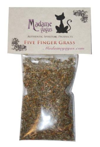 5 Finger Grass (Cinquefoil)