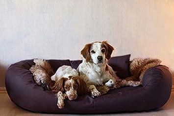 tierlando A2-16 ARES Sólido y fácil de cuidar Sofá para perro Cama para perro Talla XXL 140cm Ciruela Violeta: Amazon.es: Productos para mascotas