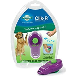 PetSafe Clik-R Trainer