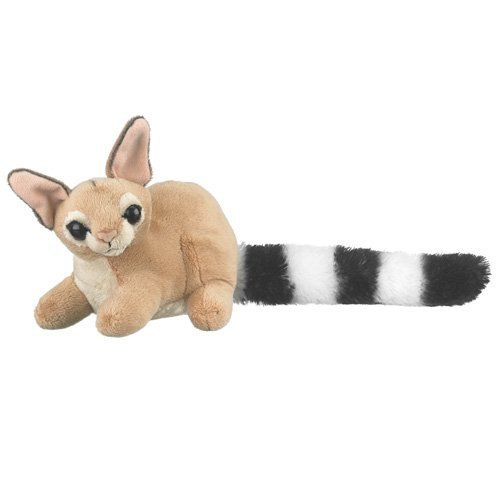 Conservation Critters Ringtail Cat Stuffed Animal Plush Stuffed Animal