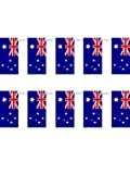 Australian Flag Bunting (25 Flags)