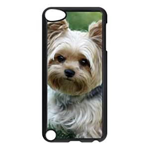 Yorkie Puppy IPod Touch 5th Case
