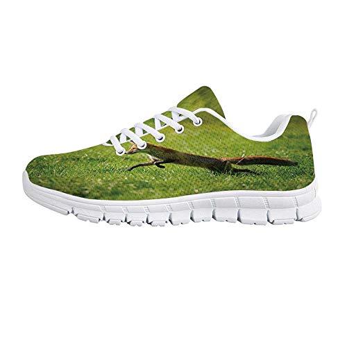 YOLIYANA Fox Jogging Running ShoesRed Fox Jumping Running in Fresh Green Grass -