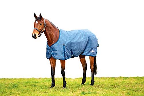 (Saxon 600D Standard Medium Blanket 84 Blue/Orchid)
