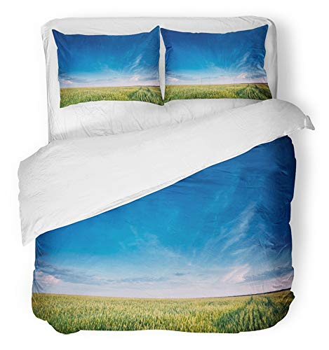 (Emvency 3 Piece Duvet Cover Set Breathable Brushed Microfiber Fabric Green Wheat Field in Spring Season Agricultural Rural Landscape Sunny Evening Bedding Set with 2 Pillow Covers Twin Size)