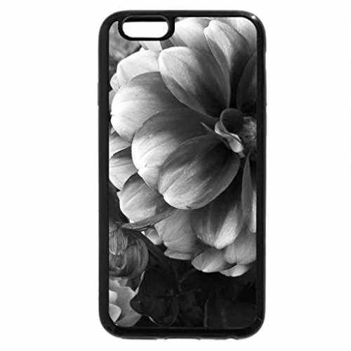 iPhone 6S Case, iPhone 6 Case (Black & White) - White Tipped Flower