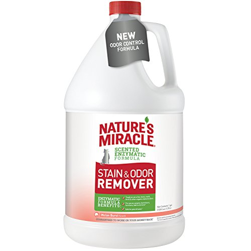 Nature's Miracle P-96997 Just for Cat Stain and Odor Remover, Melon Burst