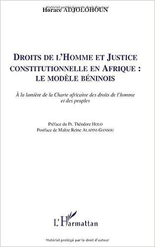 Lire Droits de l'Homme (Adjolohoun) et Justice Constitutionnelle en Afrique le Modele Beninois a la Lumie pdf epub
