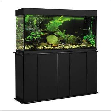 Aquatic Fundamentals 55 Gallon Upright Aquarium Stand, Black