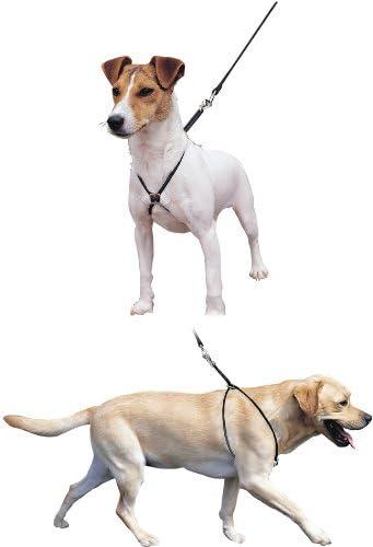 Pet-Bliss Arnés para Perro de cordón Suave Negro Mediano – LUPI ...