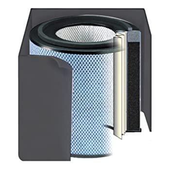 Image of Austin Air Healthmate Jr Replacement Filter w/Prefilter Home and Kitchen