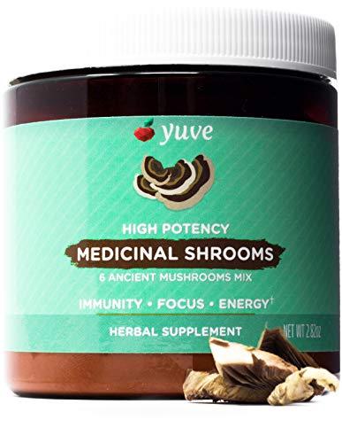 Maitake Super Turkey - Yuve 6 Organic Mushroom Extract Powder - Immune Defense Booster, Nootropic Brain Supplement & Natural Energy - Reishi, Lions Mane, Chaga, Cordyceps, Maitake, Turkey Tail - Powerful Superfood - 2.82oz