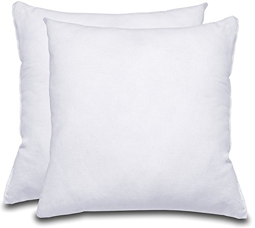 Decorative Pillow Insert  - Square 18x18 Sofa & Bed Pillow -