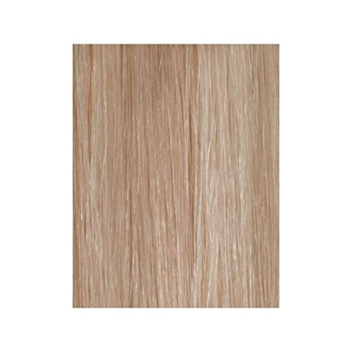 Beauty Works 100% Remy Colour Swatch Hair Extension - Champagne Blonde 613/18 (Pack of 6)