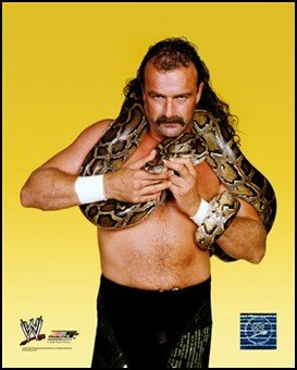 Jake The Snake Roberts 352 Art Poster Print Unknown