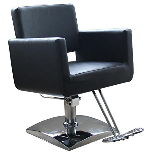 Hydraulic Barber Chair Styling Salon Work Station Chair