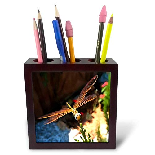 3dRose Taiche - Acrylic Painting - Dragonfly - Dragonfly with Sunlight Gilded Wings - 5 inch Tile Pen Holder (ph_299366_1)