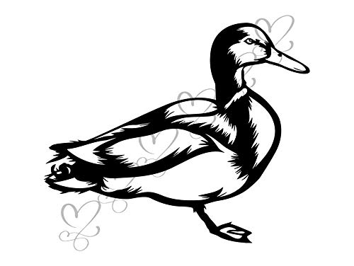 Yetta Quiller Duck Flying Animals in The Wild Nature Wings Bird Goose Drake Male Duck Vector Clipart Digital Download Circuit Vinyl Cutting Sticker