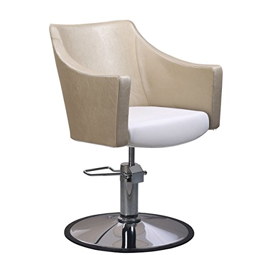 Buy salon chairs