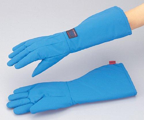 アイシス1-7970-02耐寒用手袋TS-EBMWPM B07BD2LVST