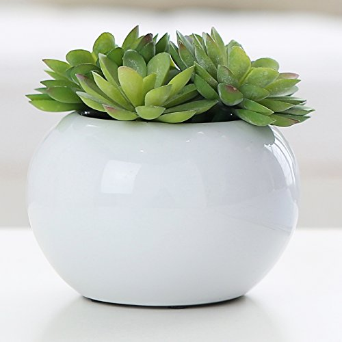 5.25 inch Round Modern Potted Green Artificial Succulent Plants w/ Glazed White Ceramic Flower Pot - MyGift (Pots For Centerpieces)