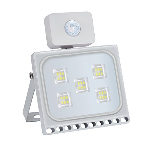 Oshide 30W Motion Sensor Flood Light, Thinner Lighter Outdoor Work Light, 3300LM, IP67 Waterproof, Super Bright Security Lights,Daylight White (6000-6500K) - Not On Delivered Fedex Time