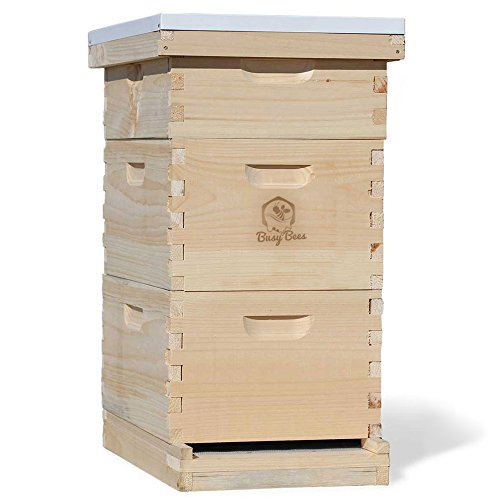 Busy Bee's -n- More Complete 8 Frame Langstroth Bee Hive includes Frames & Foundations (LBH08-2D1M)